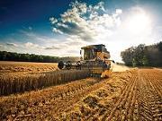 Agrarbiztositasok-iden-kedvezobb-lehet-a-dijtamogatas-merteke